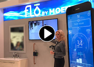Video link-Moen-Flo-sensor-presentation-NBIS