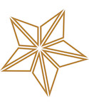 graphic star ornament