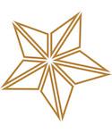 graphic star ornament